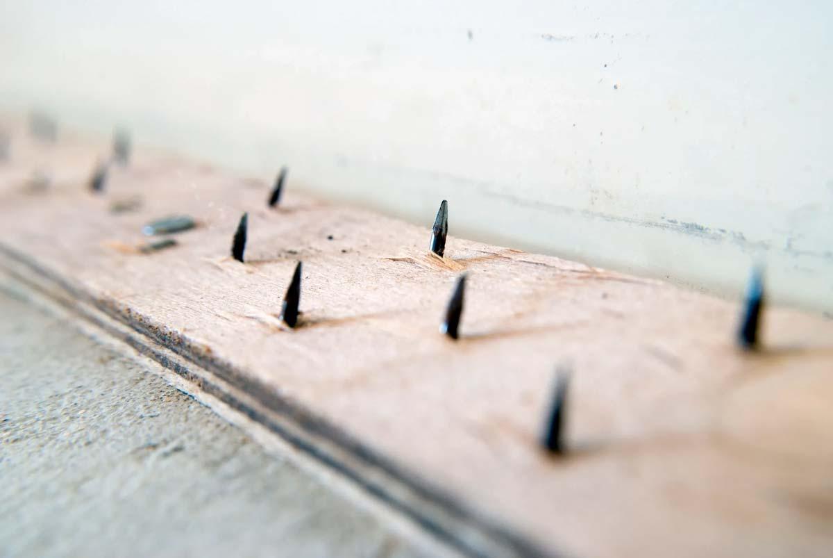 Flooring Nail Strip