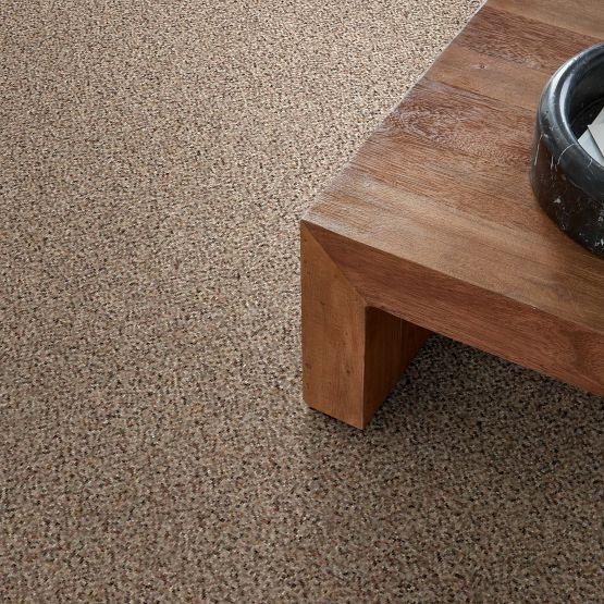 CARMEL COAST Anderson Tuftex Carpet